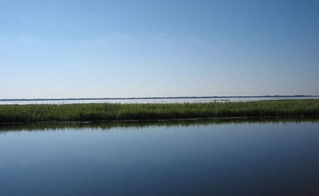Lake Tohopekaliga