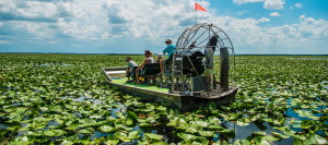 Orlando airboat tours Wild Willy's